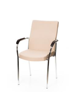 Lankytojų kėdė